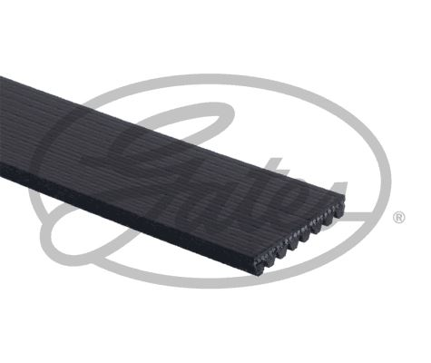 GATES 6PK2253 Micro-V Xf Ribbed V-Belt