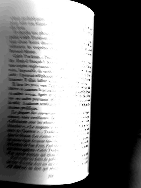 Pièce à conviction num.4 : photo de la page 288 du livre Il était deux fois
