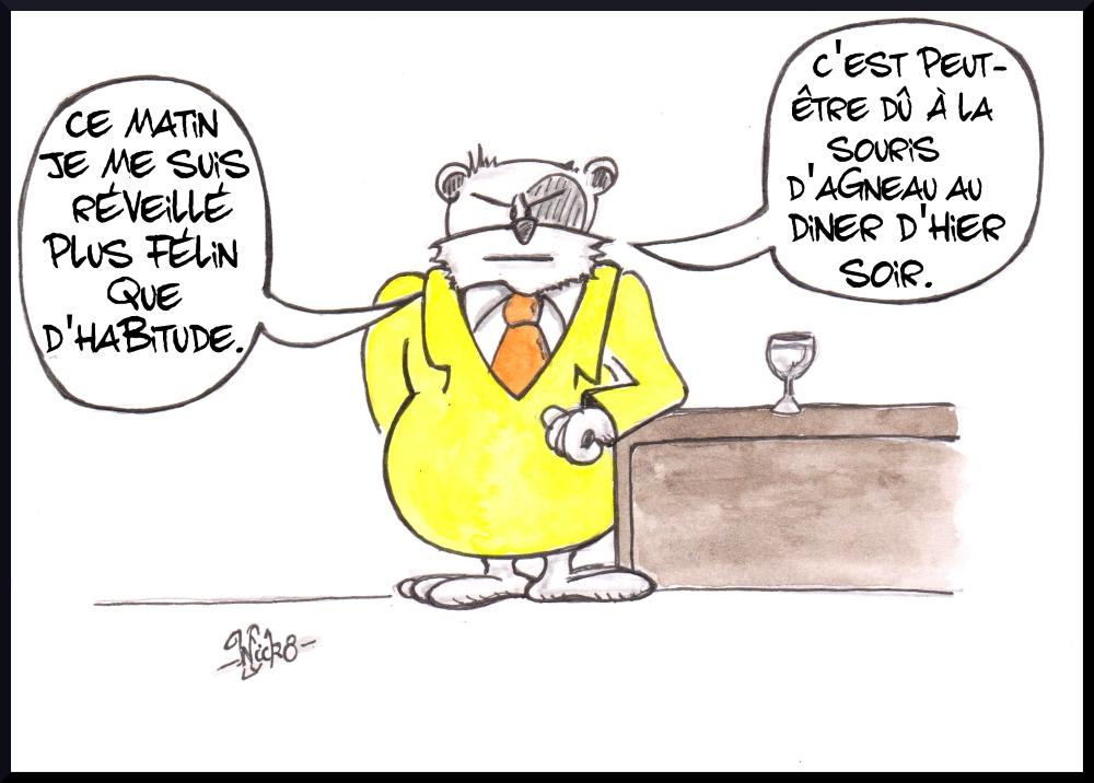 Azou Vs Cosinus 22 Clin D œil Au Chat De Philippe Geluck Azou