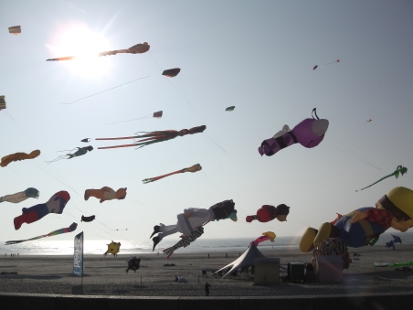 Les 29e Rencontres Internationales de Cerfs-Volants de Berck-sur-Mer