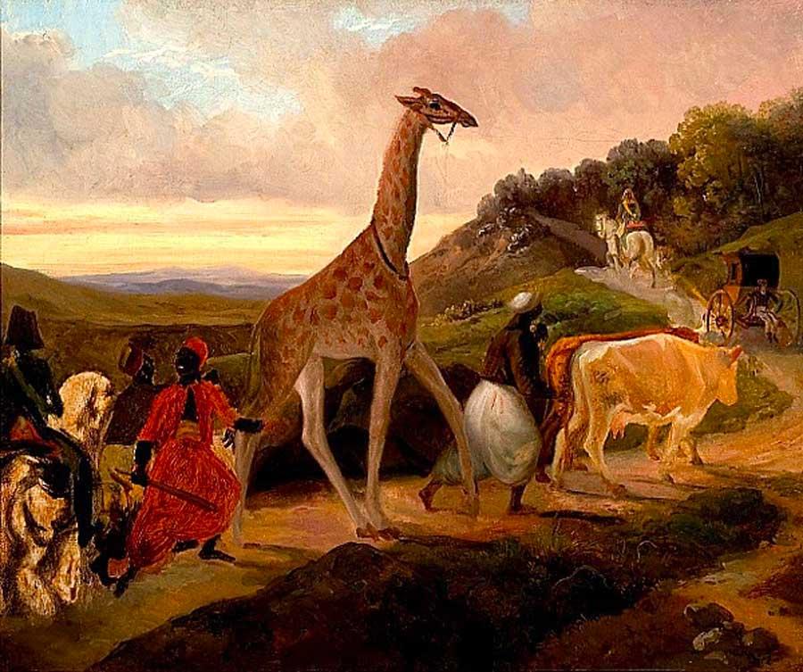 Le Passage de la Girafe près d'Arnay-le-Duc © Google Images