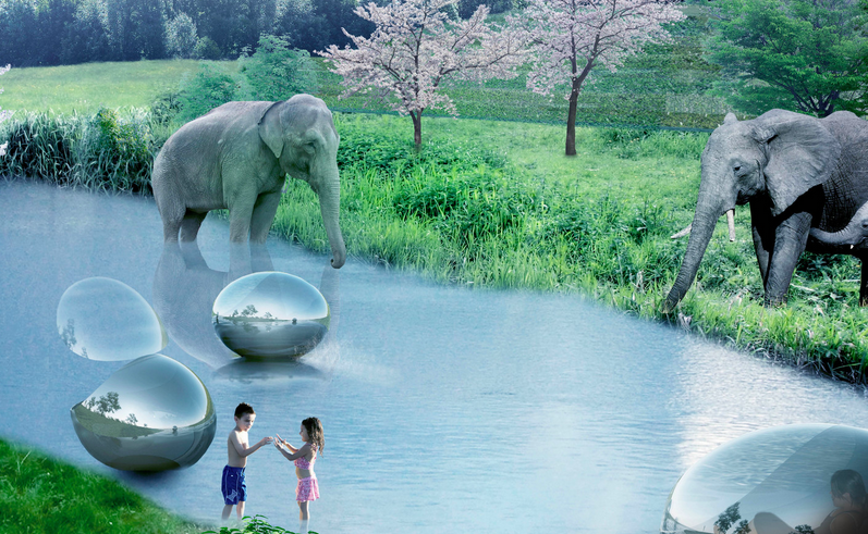 Here the Danish designs show visitors passing elephants in reflective river pods