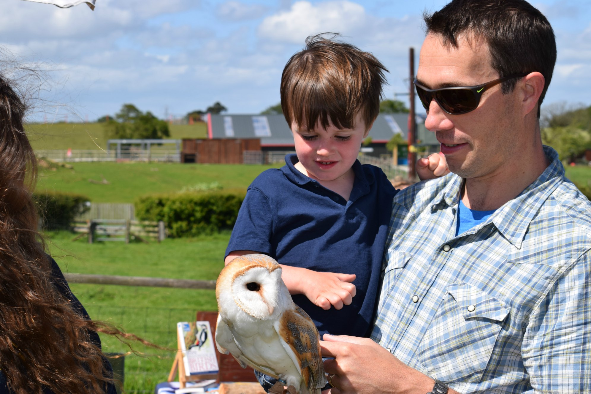 Wildlife Day owl 2016