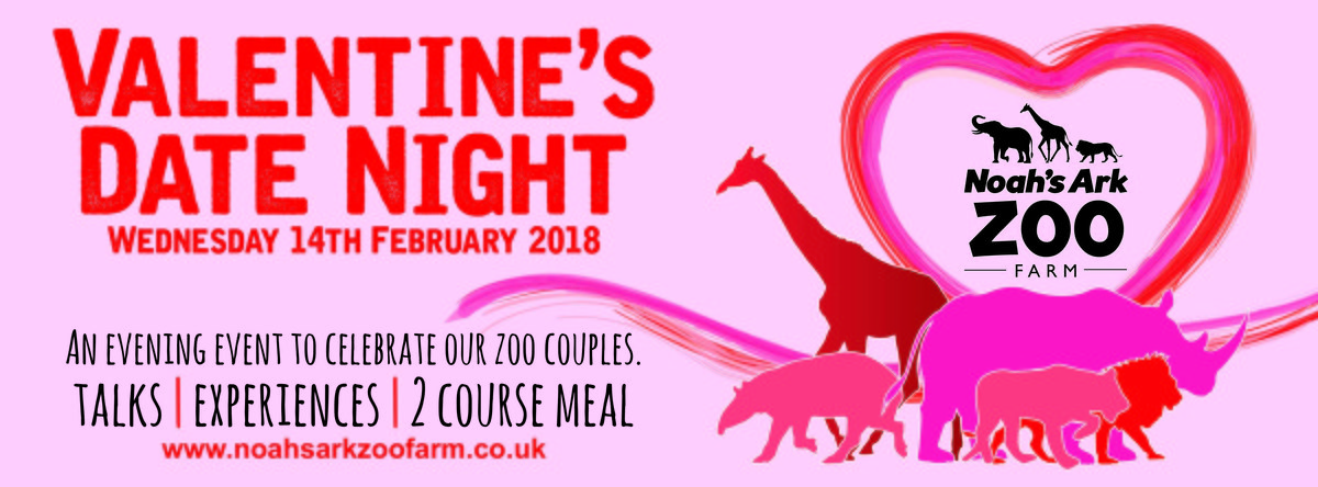 Valentines Date Night flyer for meal and animal experience