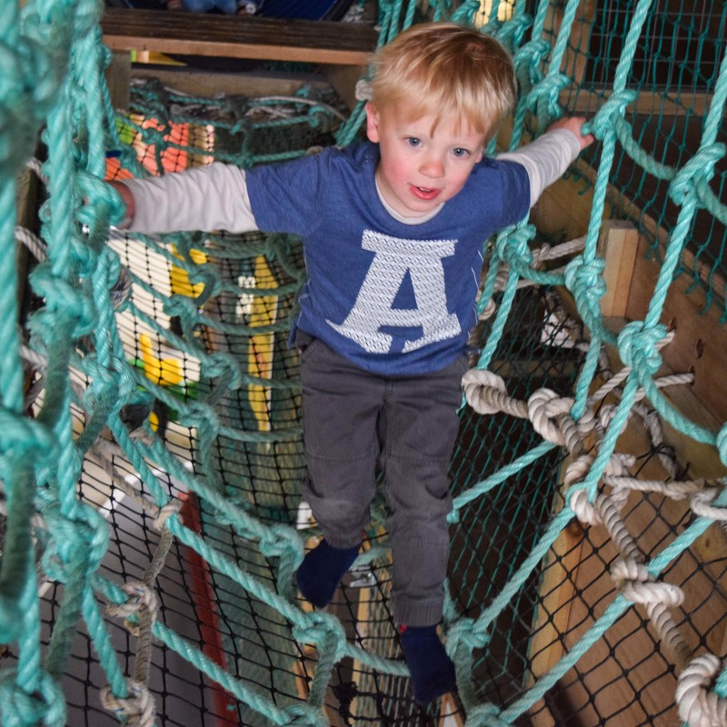 Little boy plays on rope bridge