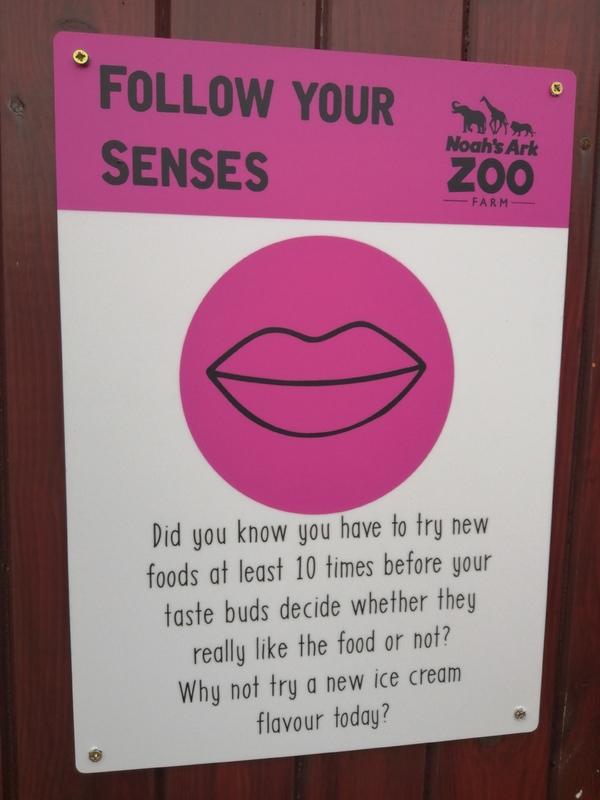 Senses Trail
