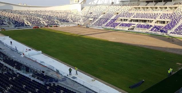הדשא באצטדיון בלומפילד (רז אמיר)