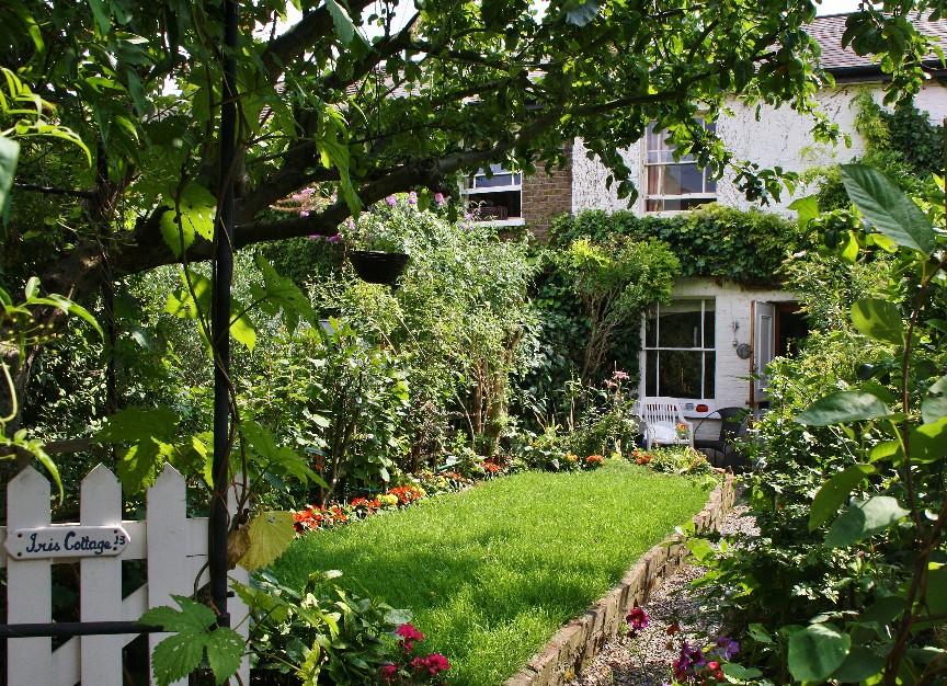 13 Garden Wall Ideas That Will Create a   Bidvine Articles