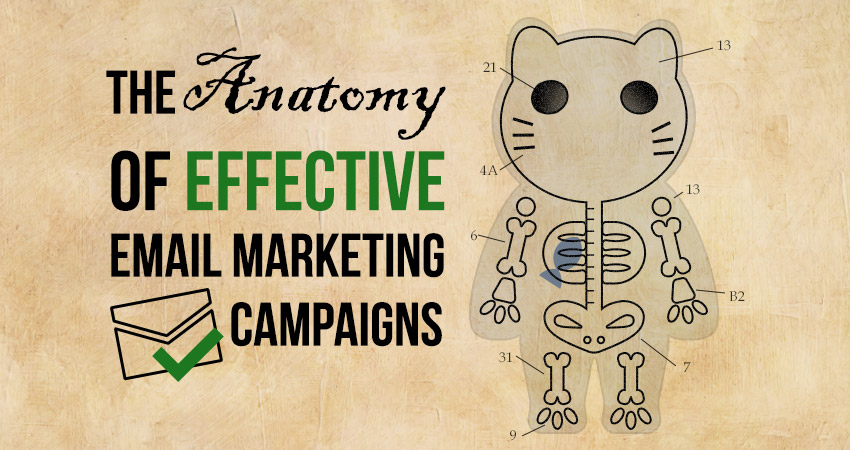 The Anatomy of Effective Email Marketing Campaigns
