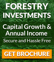 Secure and hassle free forestry investments