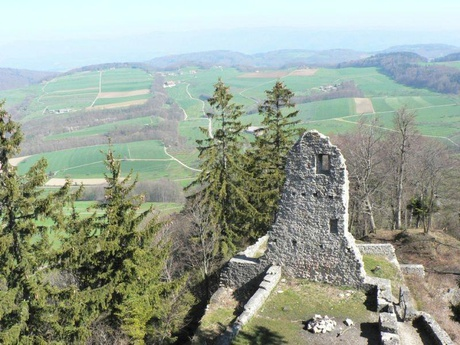 Ruine Farnsburg (Copyright: Basel Tourismus)