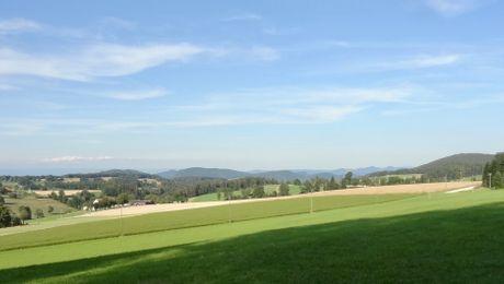 Pleigne La Burgisberg, Blick gegen Nordosten
