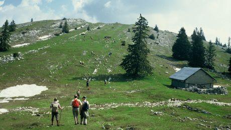 Wandergruppe auf dem Mont-Tendre