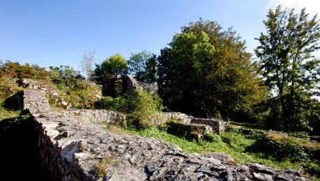 Ruine Froburg