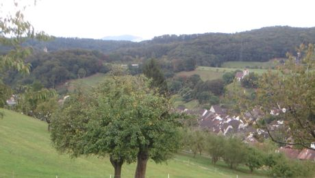 Blick vom Holzenberg über das Fünflibertal mit Ziefen