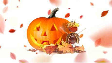 Herbst-Sonntagsverkauf in Olten