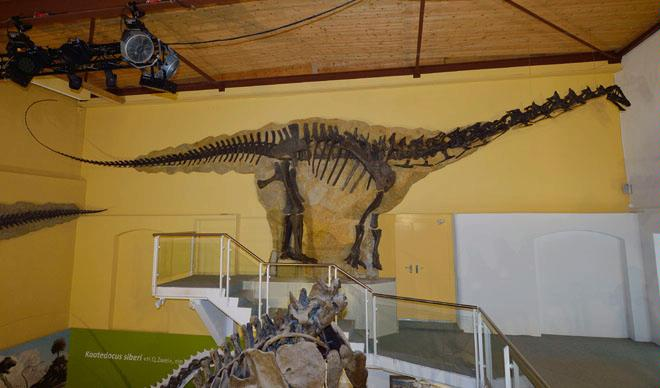 Aathal Dinosaur Museum