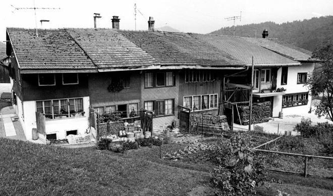Flarzhaus Freddi