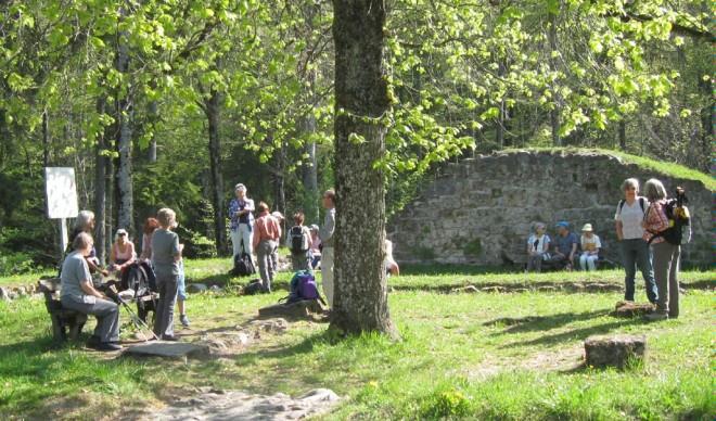 Altlandenberg Ruin