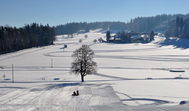 Guldenen-Forch Cross-Country Ski Trail