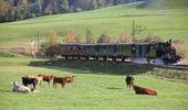 Dampfbahn-Verein Zürcher Oberland