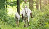 Lucy's Pferdepark Goldingen