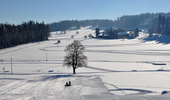 Guldenen-Forch cross-country ski trail