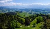 Bachtelturm Ausblick Sommer