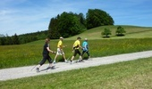 Nordic Walking Trail Hittnau