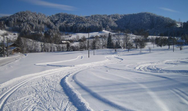 Maiwinkel Cross-Country Ski Trail in Bäretswil