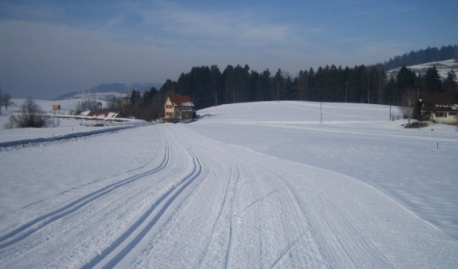 Maiwinkel cross-country ski trail, Bäretswil