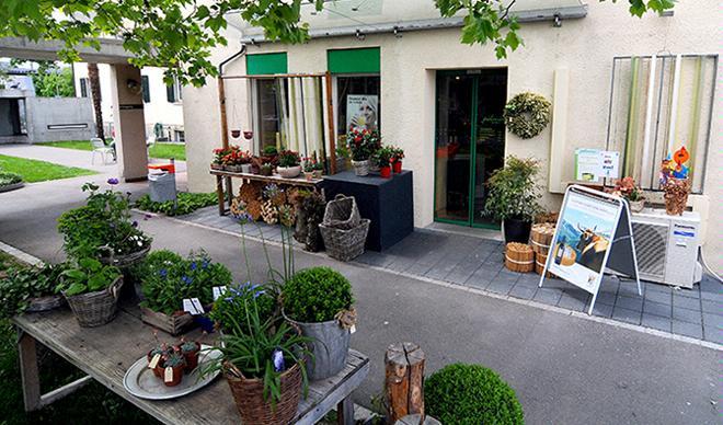 Restaurant Palmeria - Stiftung zur Palme