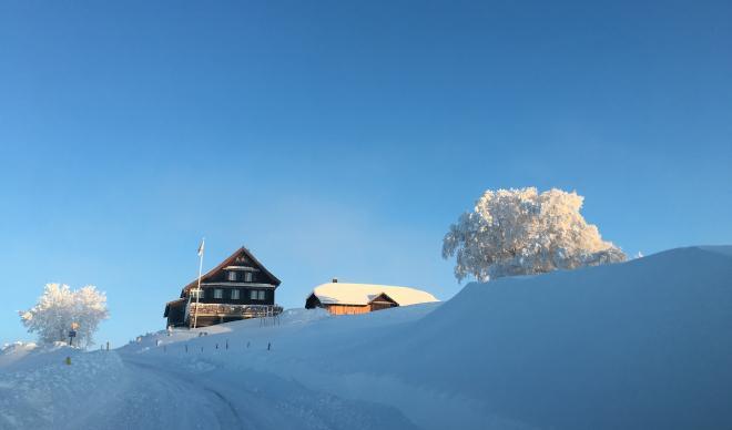 Sledging on Alp Scheidegg