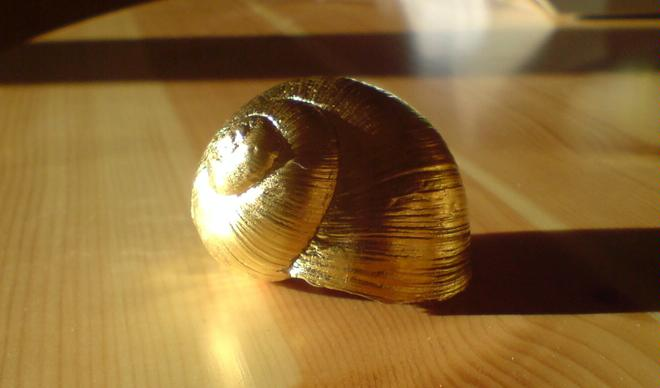 Elgg Snail Farm