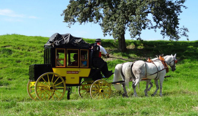 Stagecoach Ride in Grüningen