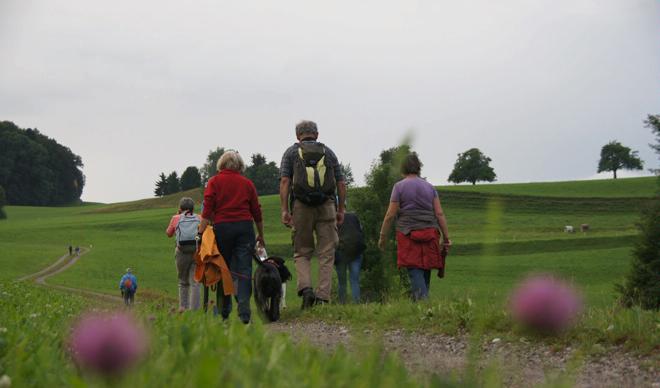Wanderregion Fischingen «Tannzapfenland»