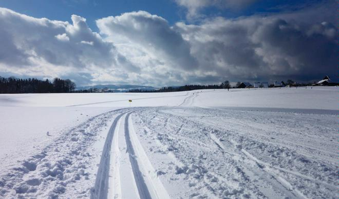 First-Kyburg cross-country ski trail