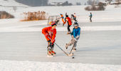 Other winter sports