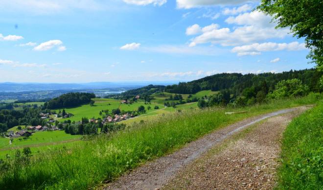 Zürcher Oberländer Milchstrasse