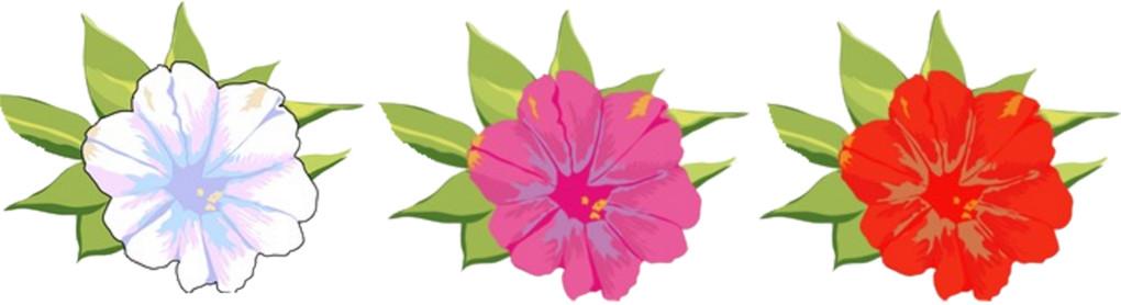 les_fleurs