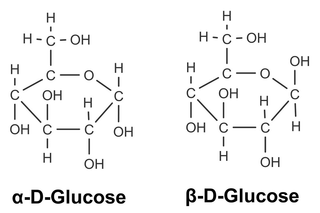 Anomere der D-Glucose