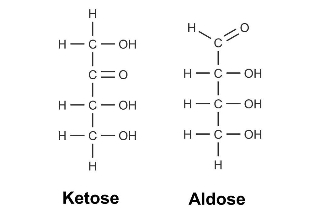 Ketose mit einer Ketogruppe und Aldose mit einer Aldehydgruppe