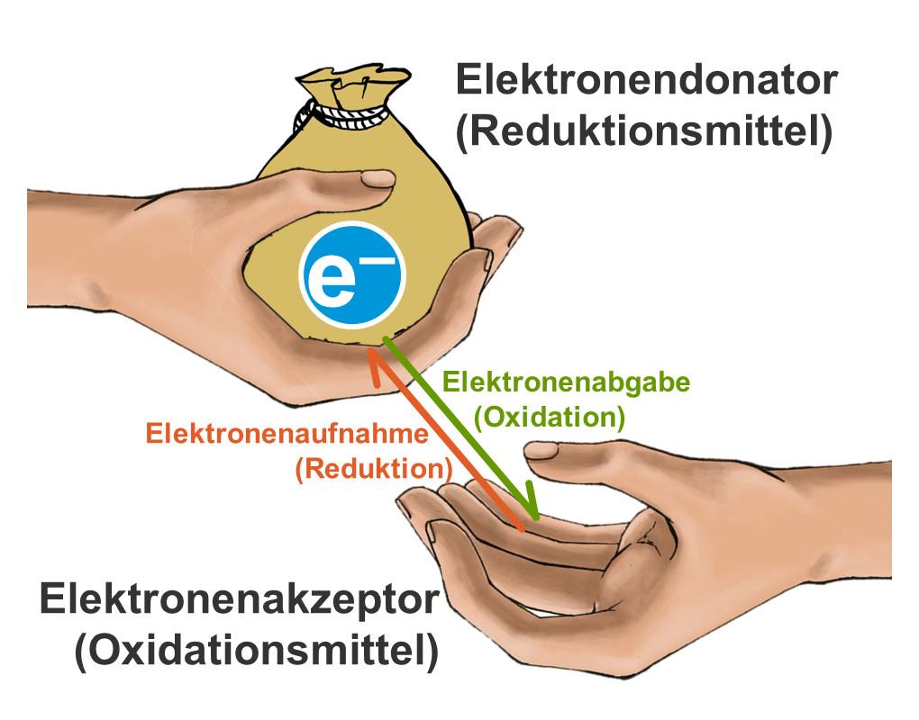Zusammenhang zwischen Elektronenabgabe und Elektronenaufnahme bei Redoxreaktionen