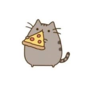 Cat like pizza