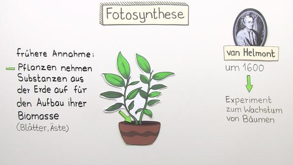 11513 entdeckung der fotosynthese