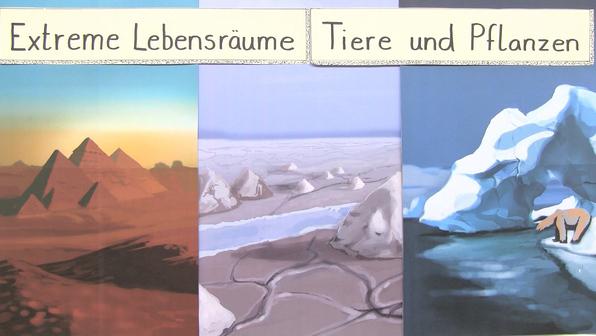 11697 extreme lebensr%c3%a4ume pflanzen und tiere.vorschaubild