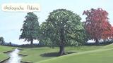Ökologische Potenz (Vertiefungswissen)