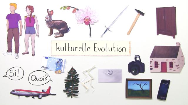 Kulturelle Evolution