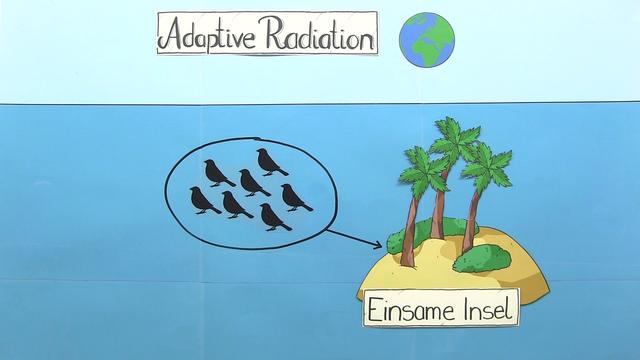 Adaptive Radiation
