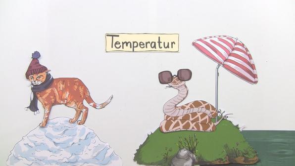 12518 der abiotische faktor temperatur   tiere.standbild001